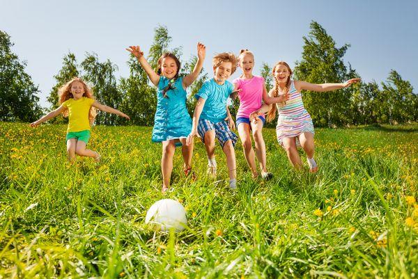 Boern loeber   Sergey Novikov  Shutterstock 201186941